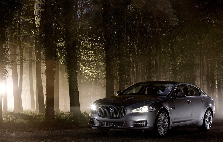 Photo wallpaper forest, machine, grey, Jaguar