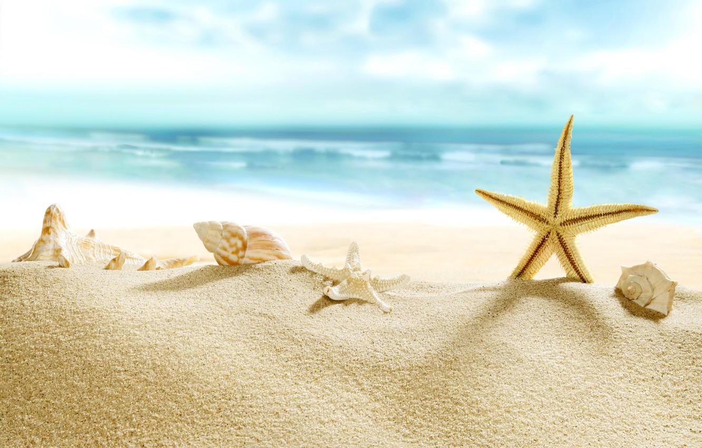 Photo wallpaper sand, sea, beach, shore, shell, summer, beach, sea, blue, sand, shore, paradise, starfish, seashells
