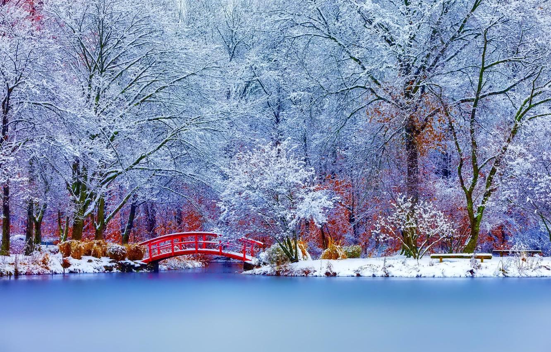 Photo wallpaper winter, snow, trees, landscape, nature
