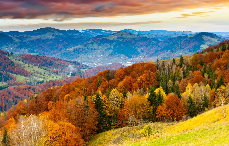 Photo wallpaper field, the sky, clouds, landscape, sunset, nature, horizon, skyline, sky, field, landscape, nature, sunset, clouds, …