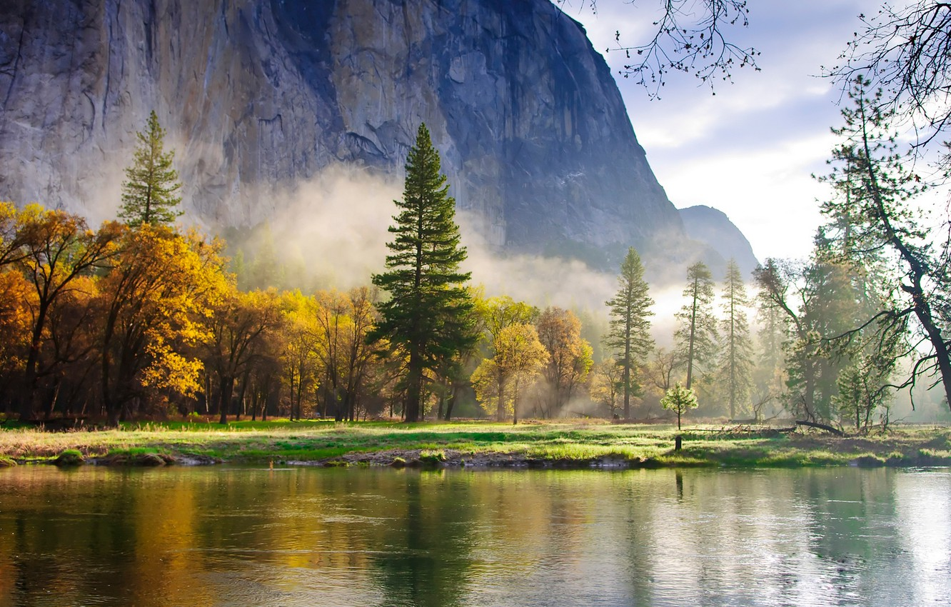 Photo wallpaper forest, mountains, nature, fog, lake, Wallpaper, morning, ate