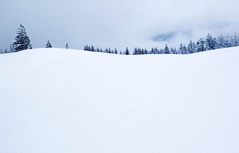 Photo wallpaper Winter, Horizon, Tree