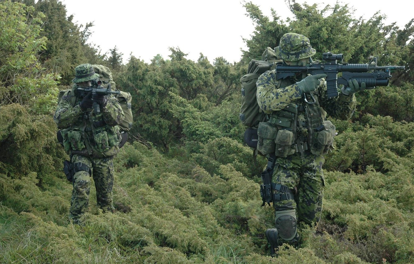 Photo wallpaper forest, grass, weapons, soldiers, unit, Denmark, special