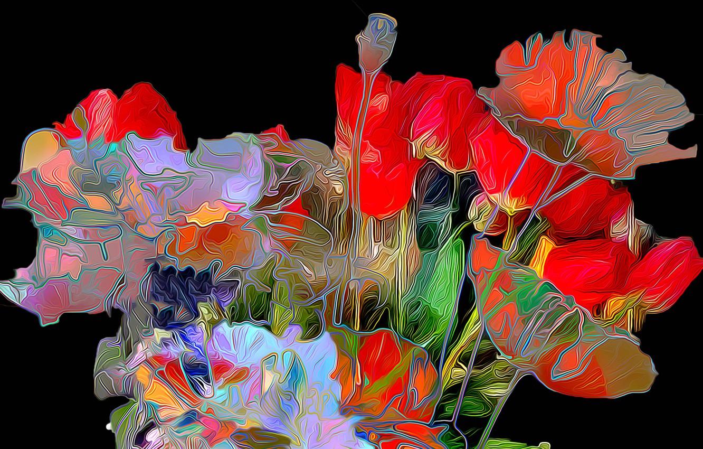 Photo wallpaper line, flowers, Maki, petals