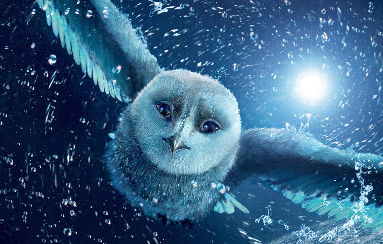 Photo wallpaper flight, night, owl, cartoon