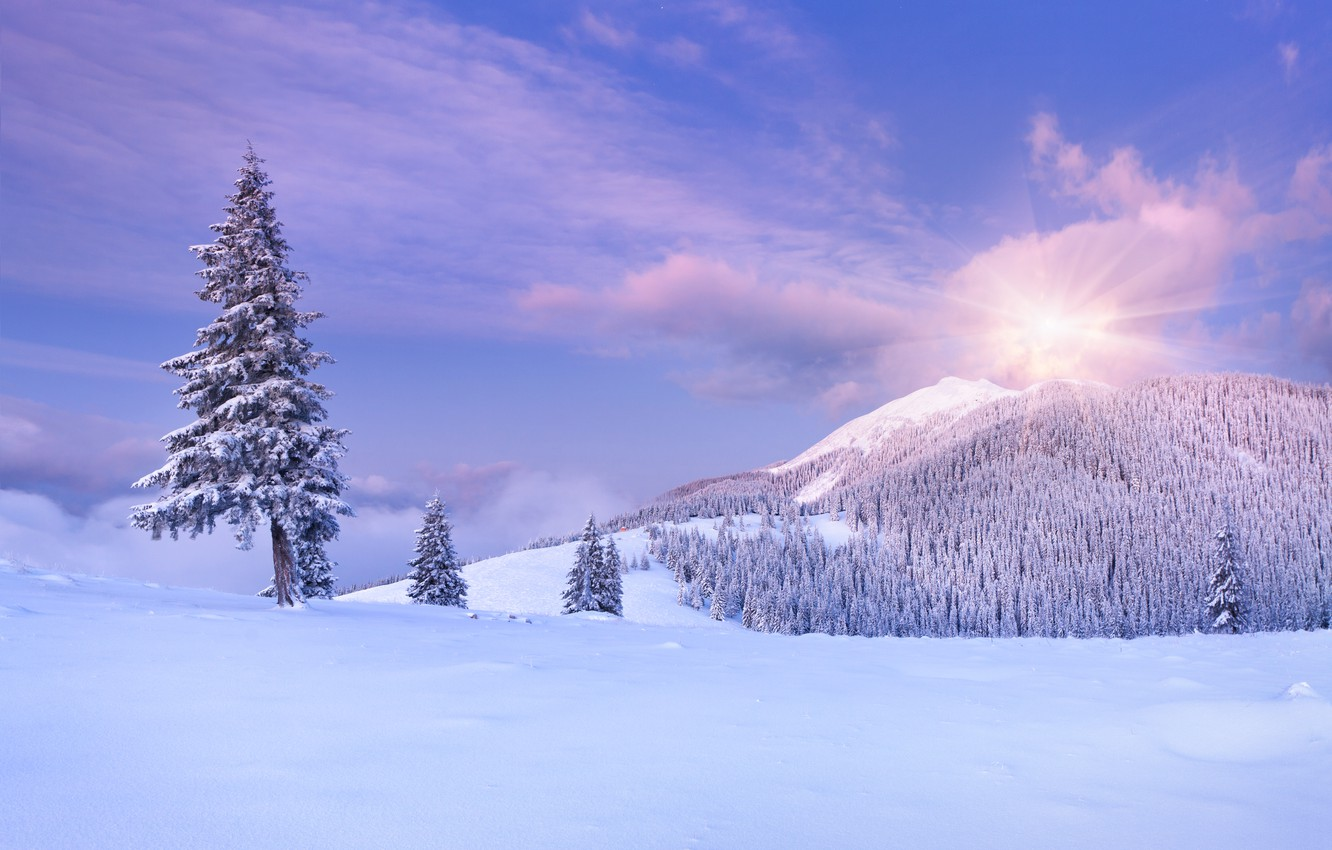 Photo wallpaper winter, the sky, clouds, snow, trees, landscape, mountains, nature