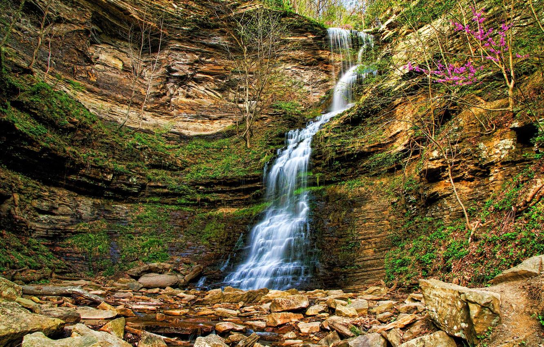 Photo wallpaper flowers, rocks, waterfall, stream