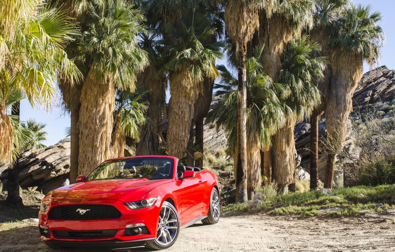 Photo wallpaper Mustang, Ford, Mustang, Ford, Convertible, 2014