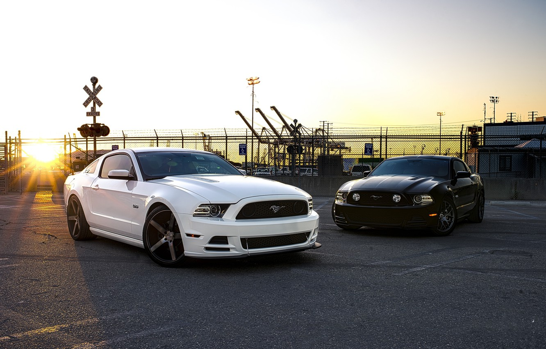 Photo wallpaper white, sunset, black, mustang, Mustang, the fence, white, ford, black, Ford, sunset