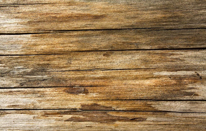 Photo wallpaper wall, wood, tables, varnish