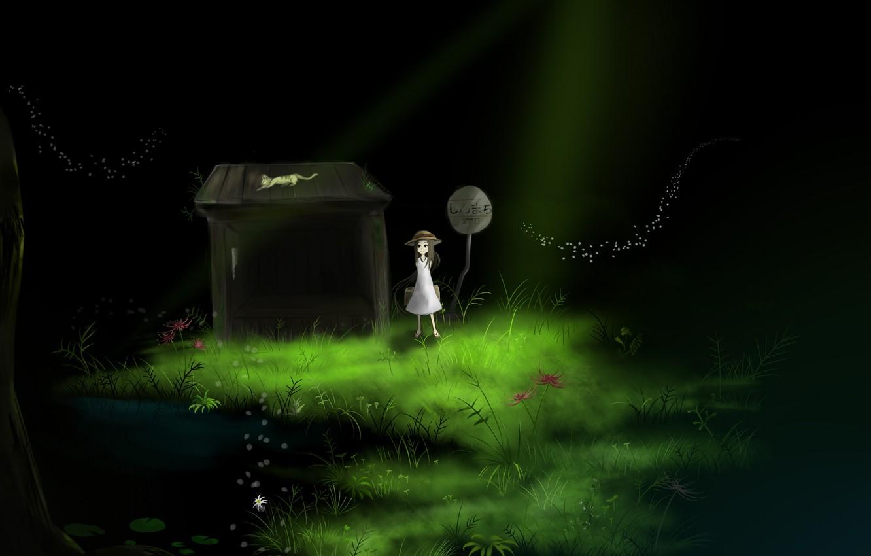 Photo wallpaper grass, cat, water, light, flowers, house, sign, hat, anime, art, girl, bag, youtube