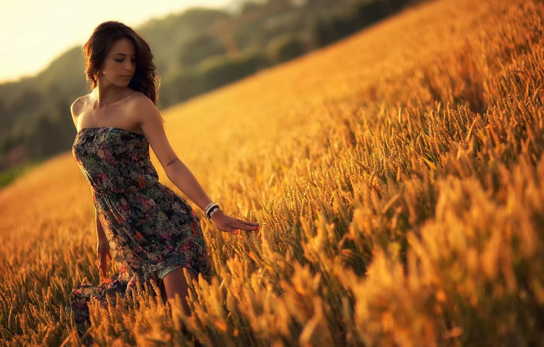 Photo wallpaper field, summer, girl, sunset, dress