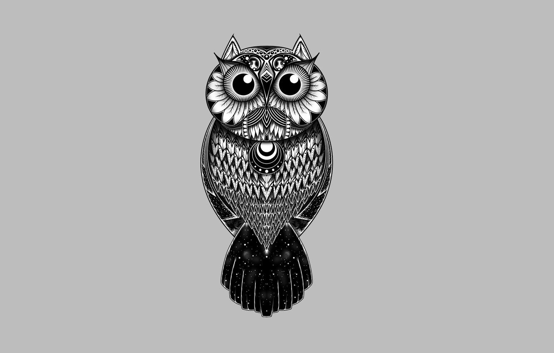 Photo wallpaper owl, bird, patterns, light background, owl