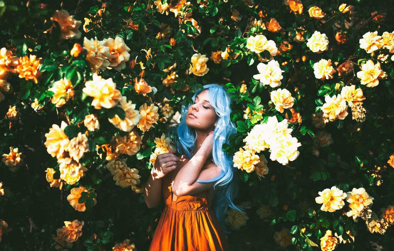 Photo wallpaper girl, flowering, blue hair, sunlight, True Blue, Alexandra Cameron