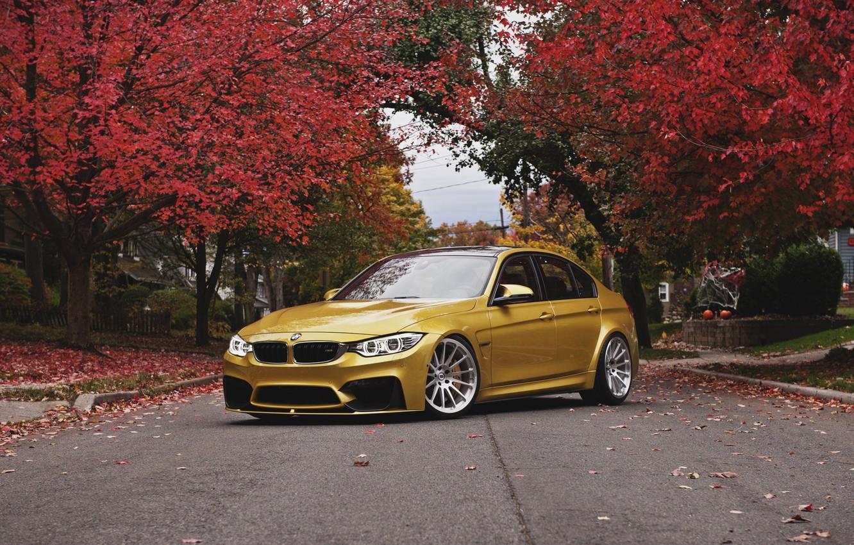 Photo wallpaper autumn, BMW, BMW, wheels, front, autumn, face, angel eyes, F80