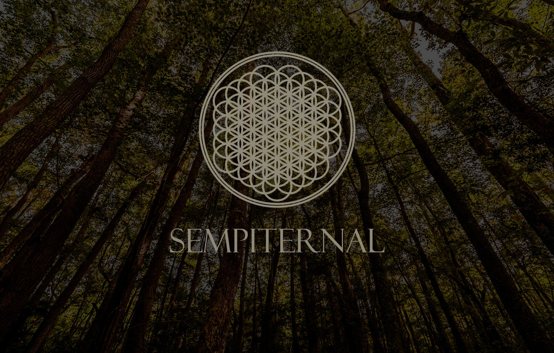 Photo wallpaper Music, Wood, Logo, Post-Hardcore, Bring Me The Horizon, Metalcore, Trees, Sempiternal, Electronicore