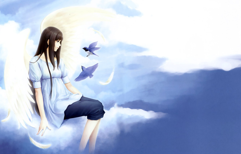 Photo wallpaper girl, clouds, birds, tenderness, clouds, Kara no shoujo