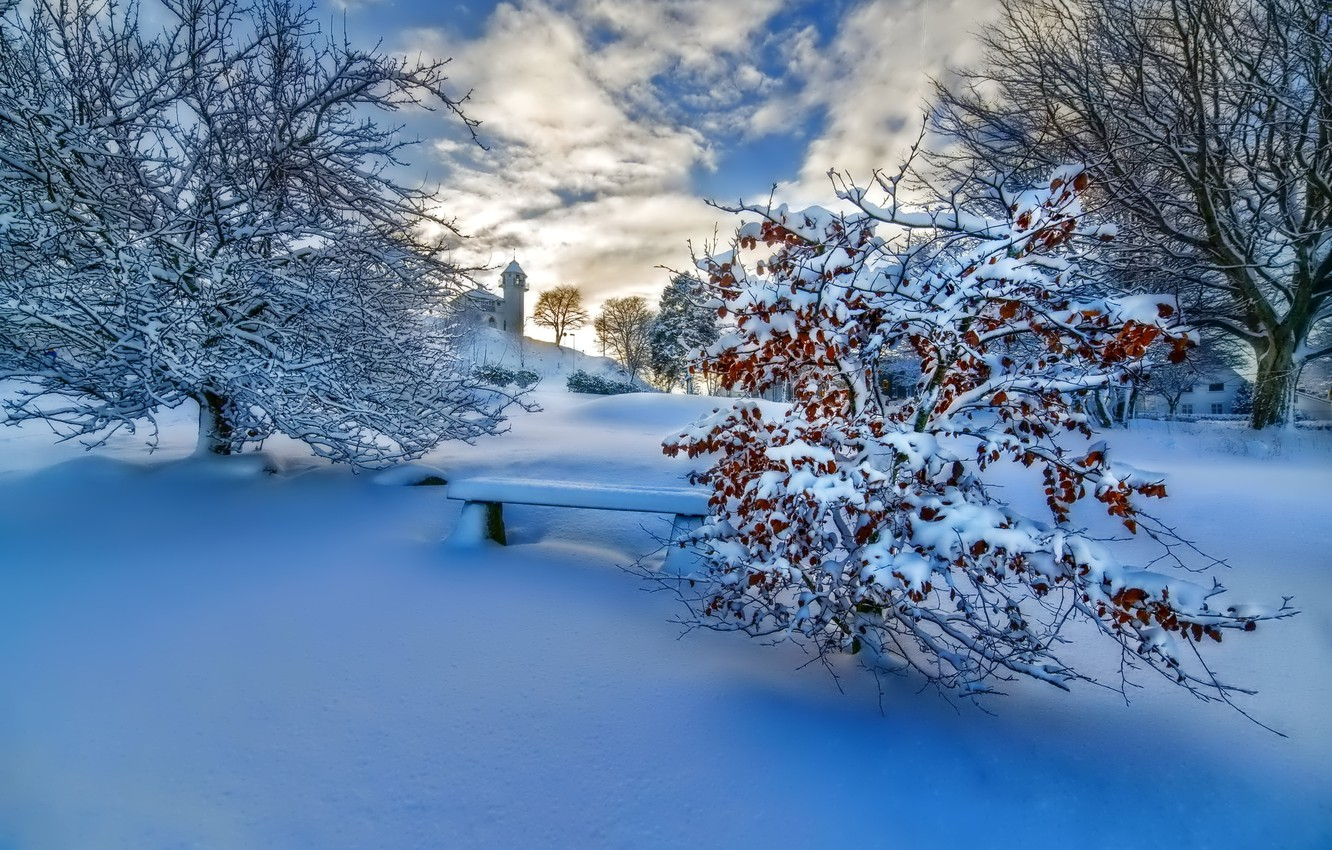 Photo wallpaper winter, the sky, clouds, snow, trees, landscape, sunset, nature