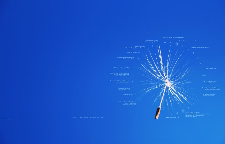 Photo wallpaper text, labels, creative, dandelion, fluff, flight, calendar, date, events, achene