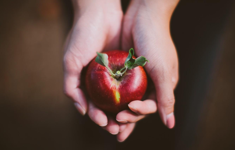 Photo wallpaper red, Apple, hands