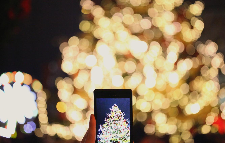 Photo wallpaper lights, photo, holiday, tree, New Year, phone, garland, screen