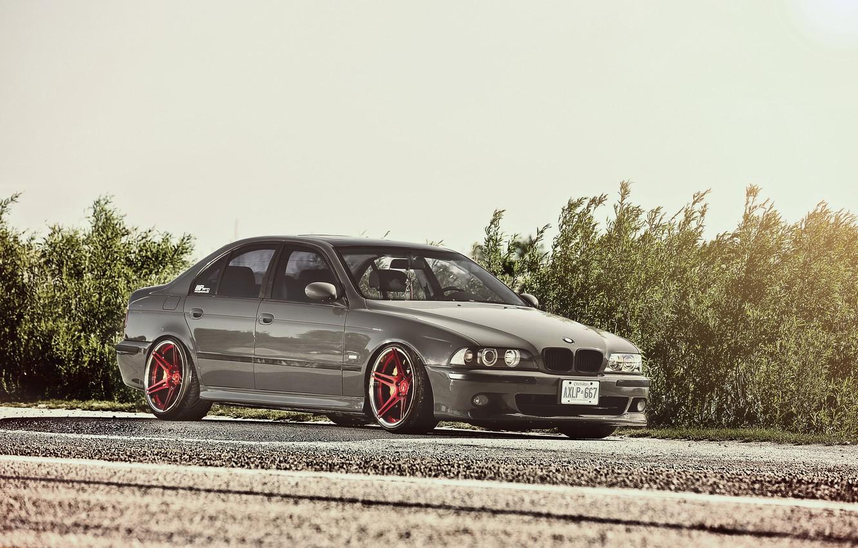 Photo wallpaper BMW, BMW, Blik, the bushes, E39, 5 Series