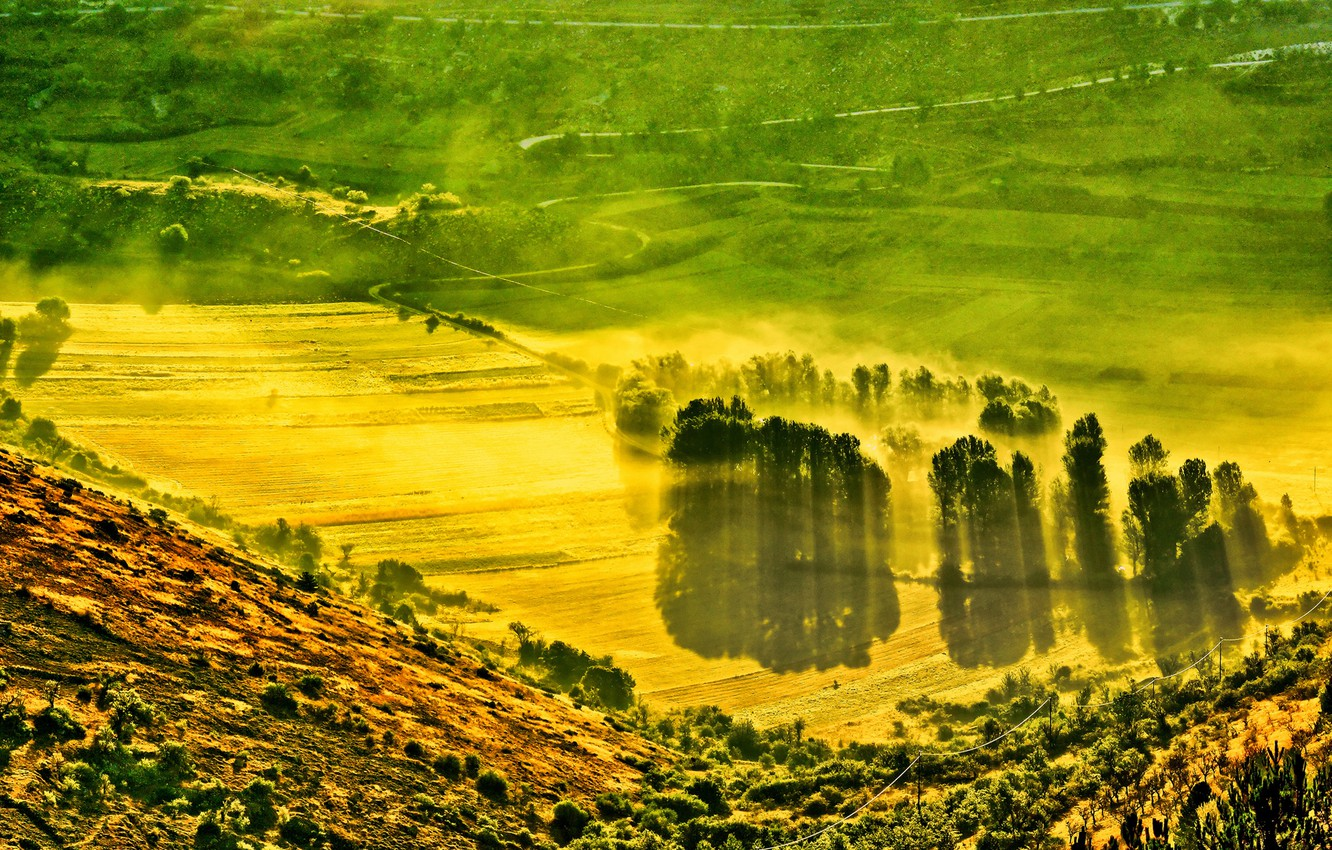 Photo wallpaper field, trees, mountains, fog, valley, slope