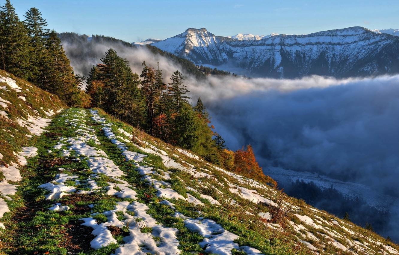 Photo wallpaper the sky, snow, trees, mountains, fog, slope
