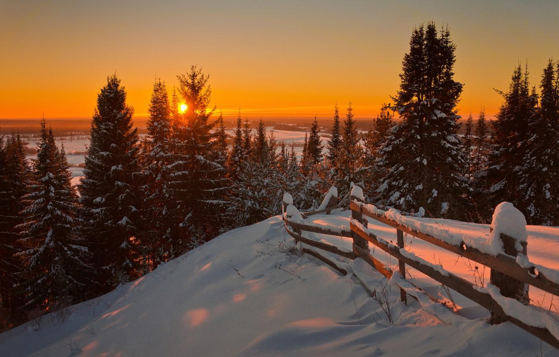 Photo wallpaper Nature, Winter, Landscape, Sun, Snow, Sunrise, Firs