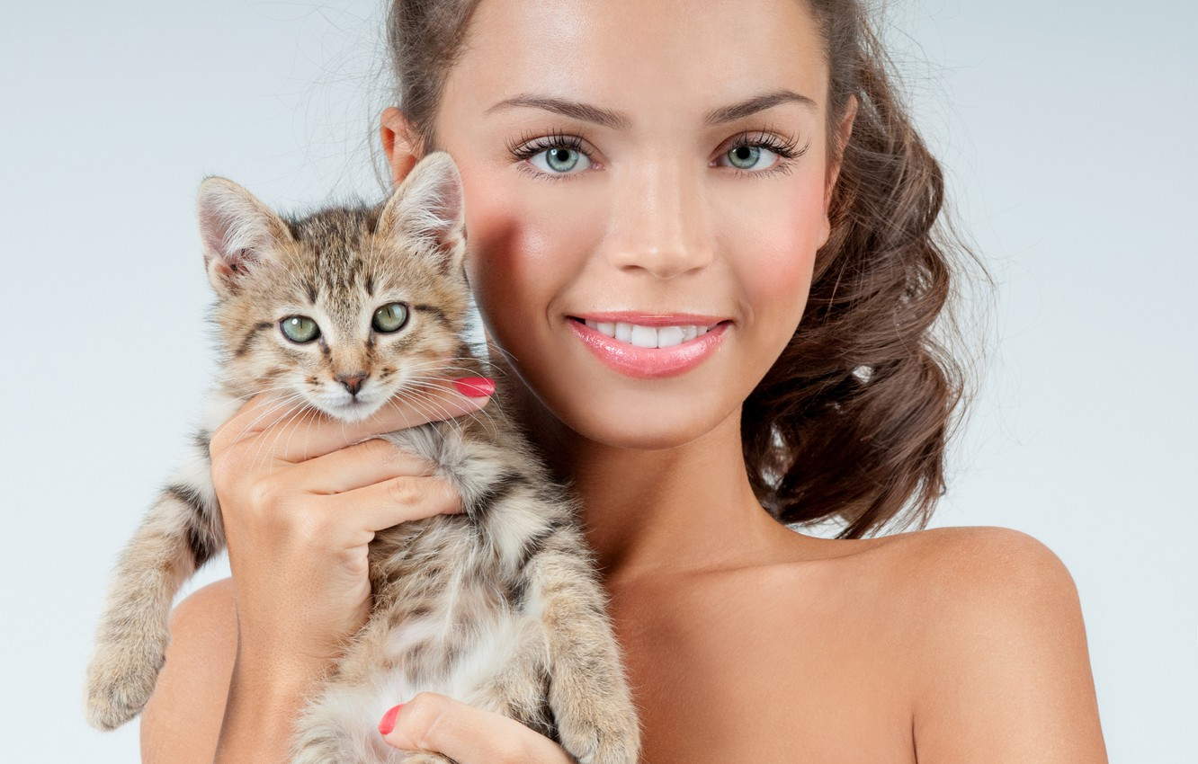 Photo wallpaper girl, smile, background, makeup, brunette, hairstyle, kitty, cute, keeps, in the hands