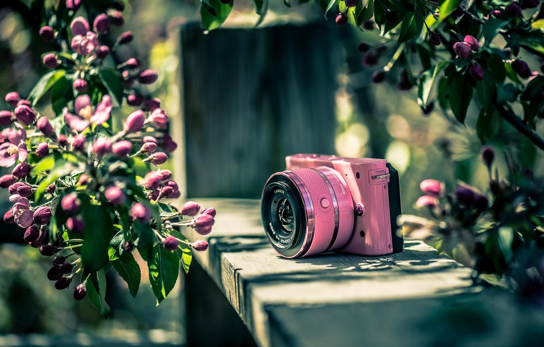 Photo wallpaper background, color, the camera, Nikon
