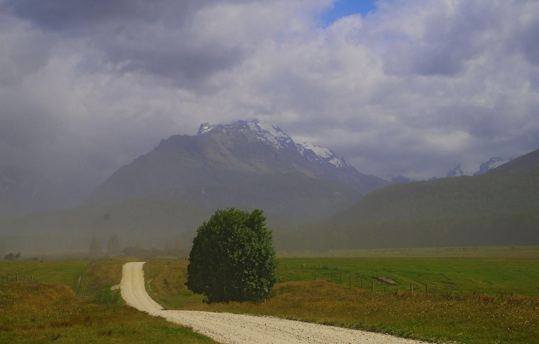 Photo wallpaper road, field, mountains, fog, tree, New Zealand