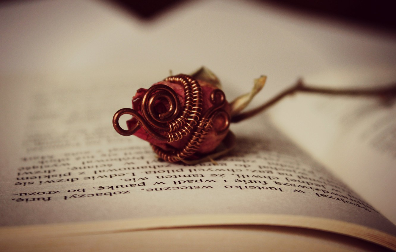Photo wallpaper flower, rose, book, page