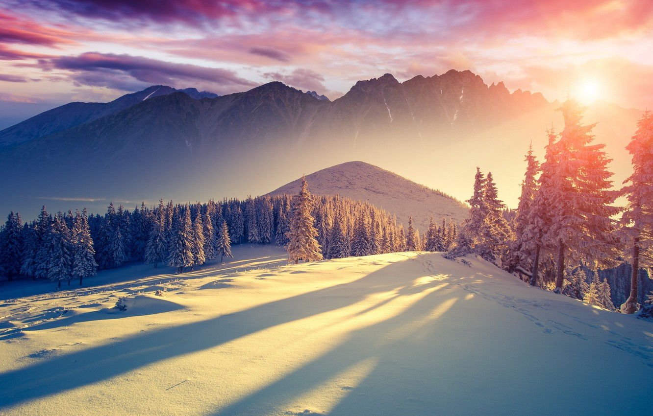 Photo wallpaper cold, winter, the sky, the sun, clouds, light, snow, trees, mountains, freshness, nature, landscapes, silence, …