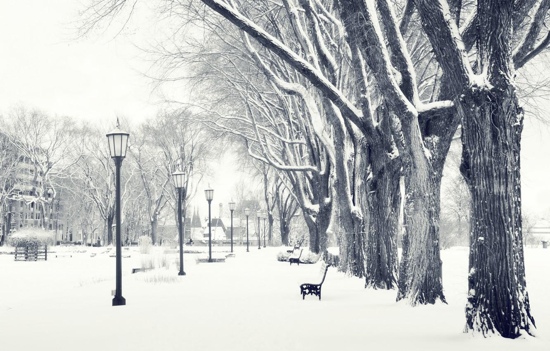 Photo wallpaper winter, snow, Park, shop, lantern
