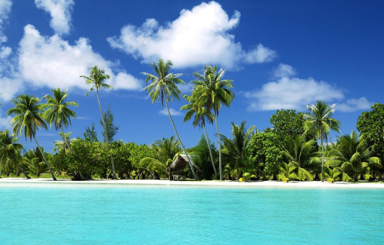Photo wallpaper sand, water, palm trees, the ocean, tropical island, beach.sea