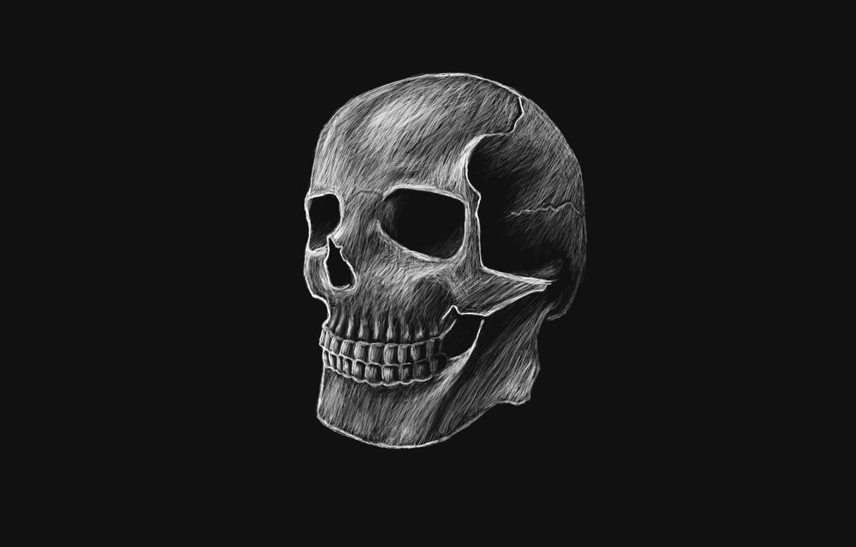 Wallpaper the dark background, skull, head, skeleton images