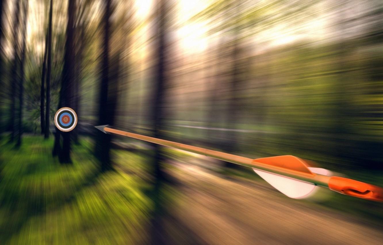 Photo wallpaper grass, trees, goal, flies, Arrow