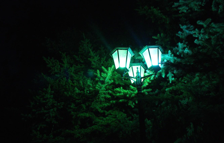 Photo wallpaper summer, night, spruce, lantern, July, 2016