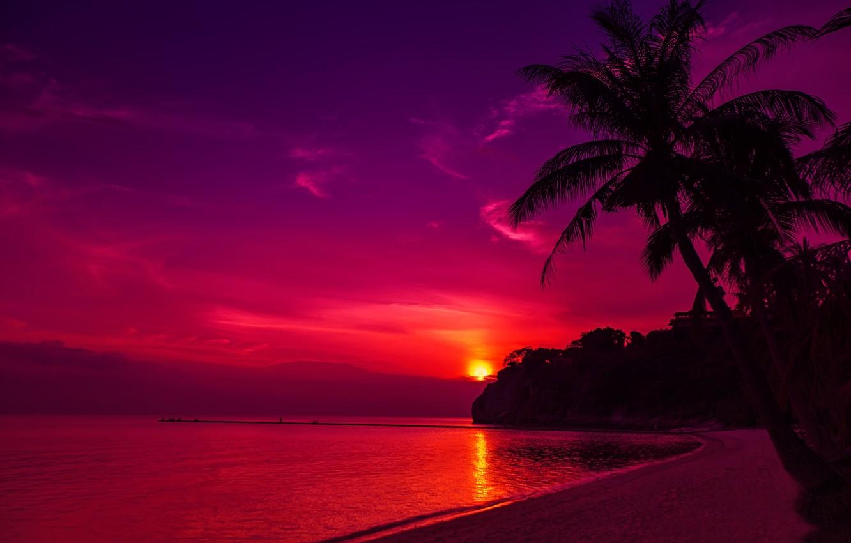 Photo wallpaper sand, sea, beach, the sky, the sun, sunset, palm trees, shore