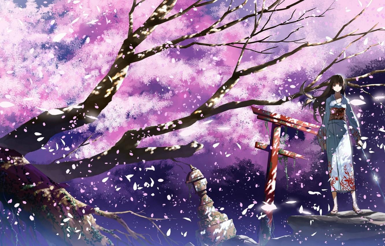 Photo wallpaper girl, branches, the wind, katana, gate, petals, Sakura, lantern, kimono, flowering