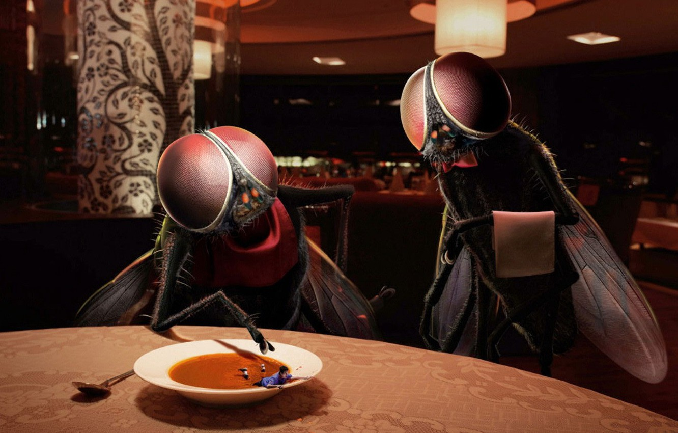Photo wallpaper fly, people, humor, soup, Restaurant