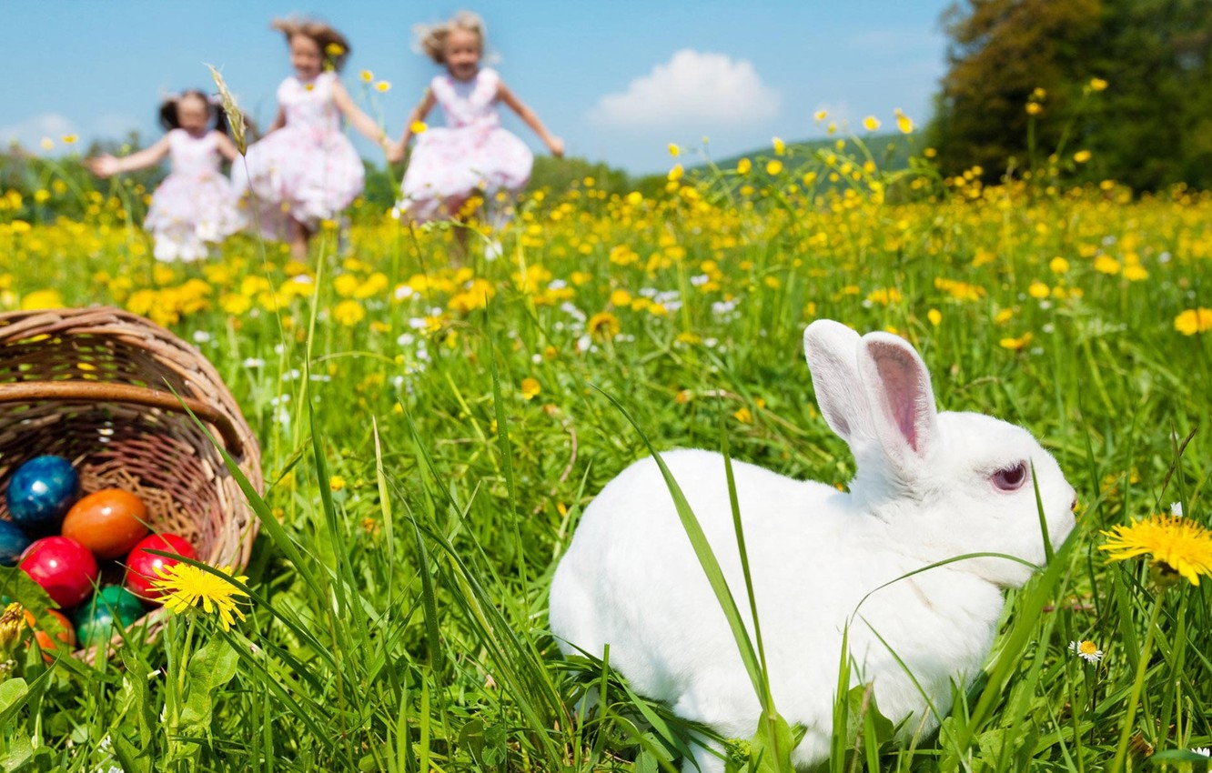 Photo wallpaper WHITE, The SKY, CLOUDS, COLORFUL, RABBIT, FLOWERS, TRIO, SPRING, GLADE, MOOD, EASTER, DANDELIONS, GIRLS, BASKET, …