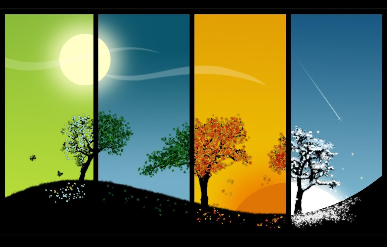 Photo wallpaper the sun, trees, seasons, seasons