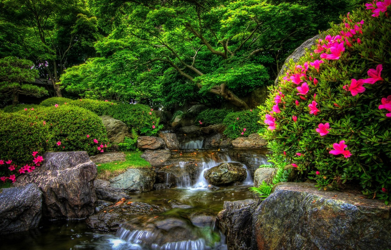 Photo wallpaper forest, flowers, nature, Park, river, stones, forest, river, nature, Park, flowers, stones