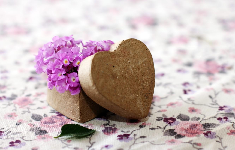 Photo wallpaper purple, flowers, background, Wallpaper, mood, heart, leaf, wooden, form, leaf, flowers, heart, widescreen, box, full …