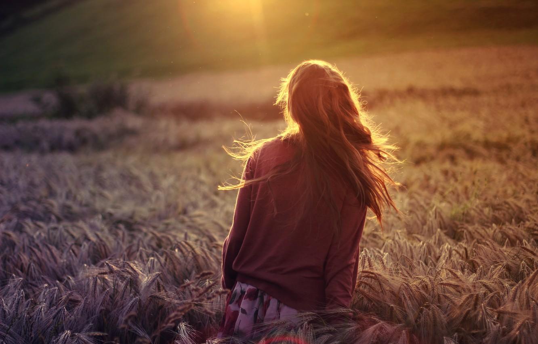 Photo wallpaper wheat, field, girl, the sun, rays, nature, background, Wallpaper, mood, rye, plants, brunette, widescreen, full …