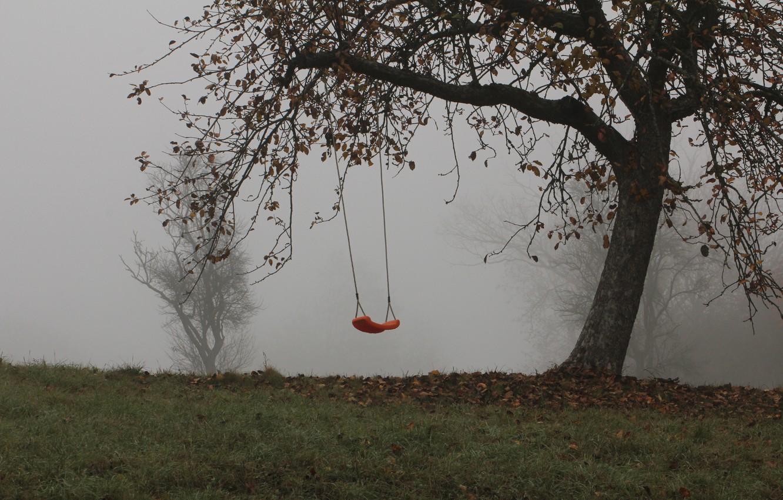 Photo wallpaper trees, fog, swing, Autumn, trees, autumn, fog, swing, mist