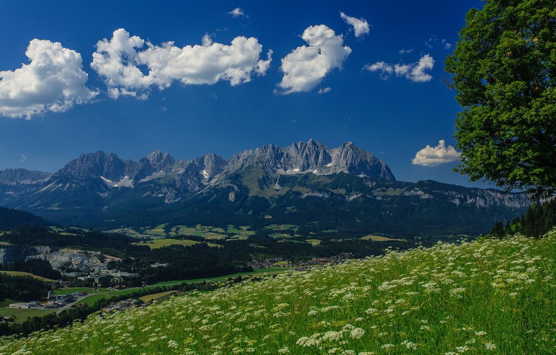 Photo wallpaper mountains, tree, Austria, Alps, meadow, panorama, Austria, Alps, mountain Wilder Kaiser, Wilder Kaiser
