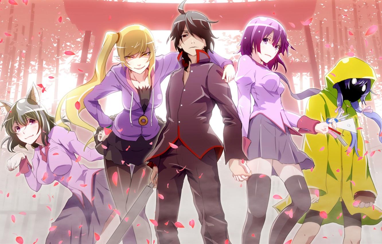 Photo wallpaper Anime, Bakemonogatari, Araragi Koyomi, Tsubasa Hanekava, Shinobu Osino, Suruga Kambar., Senjougahara hitagi